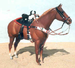 charra sidesaddle