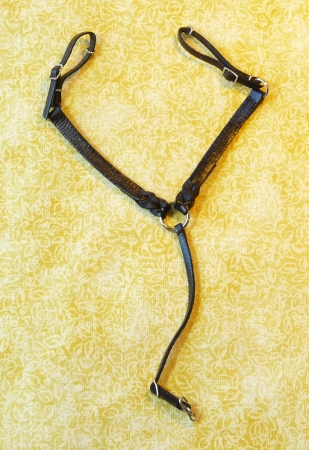 Split Braid Western Bridle -- scale miniature